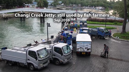 Changi Creek Jetty still well used by fish farmers, Sep 2016