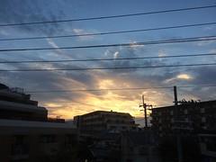 thanks for today❤︎  #sunset #osaka #japan