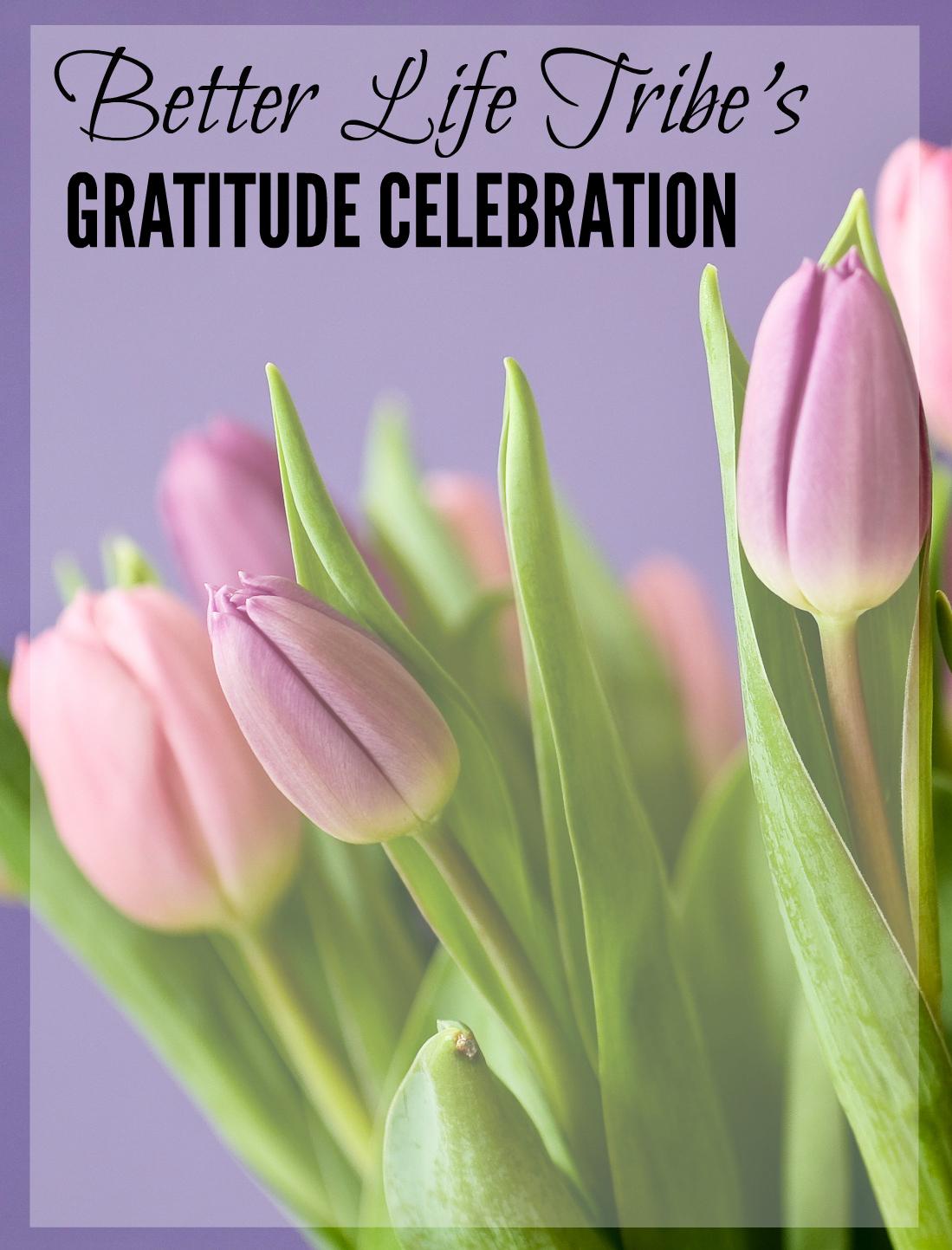 Gratitude Celebration September