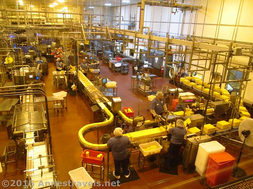 Factory floor at the Tillamook Cheese Factory, Tillamook, Oregon