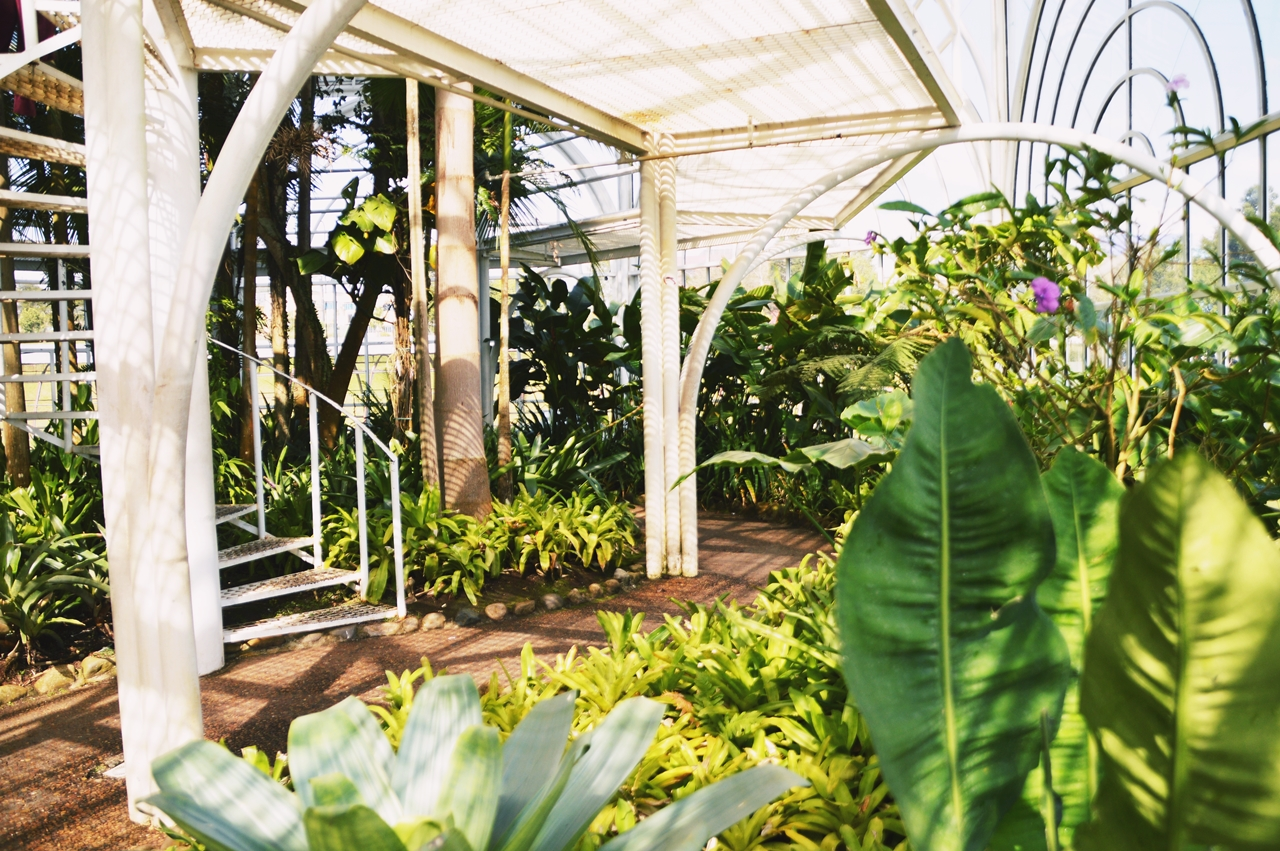 botanico2
