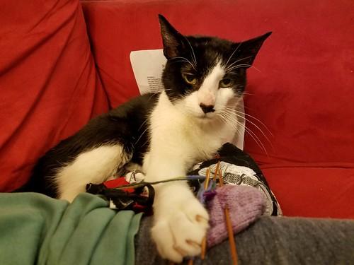 No More Knitting!