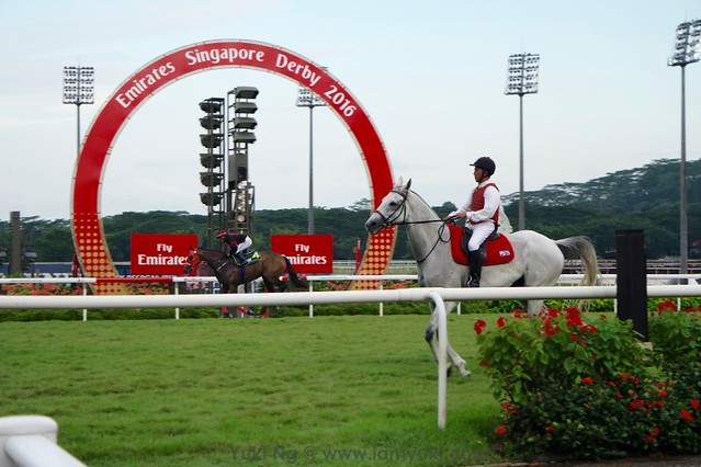 Emirates Singapore Derby 2016SAM_9793 34redfashion_yuki ng