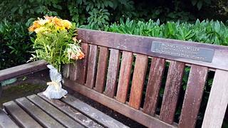 Memorial Bench remembered