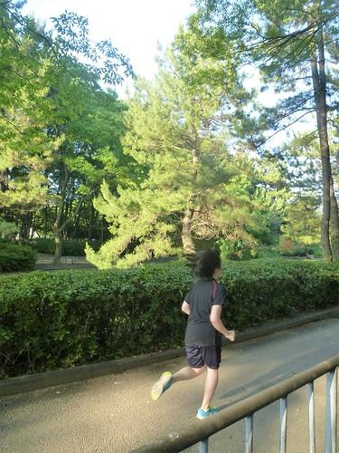 jp16-Nagoya-Château-Parc Meijon (10)
