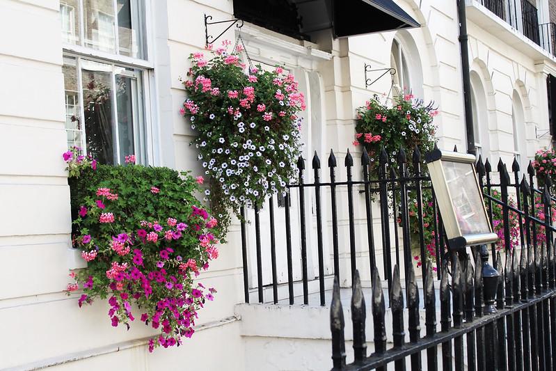 Lontoo päivä 1 3 kukkia