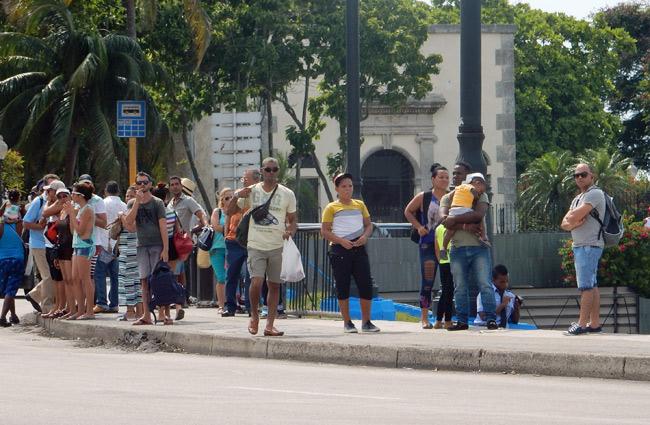 havana-bus-stop