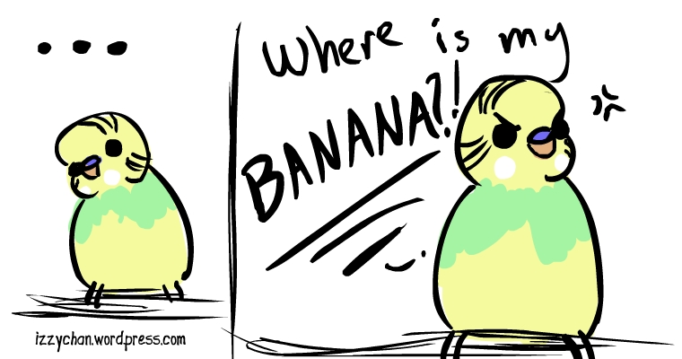 where is my banana budgie