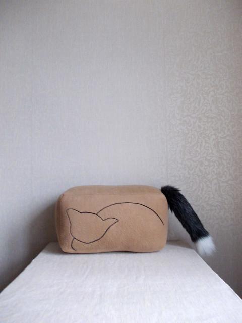 Schrödingers cat pillow, Schrodingers Cat pillow