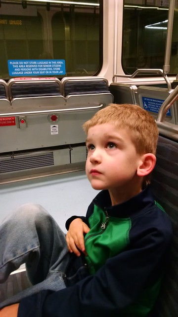Benji rides light rail
