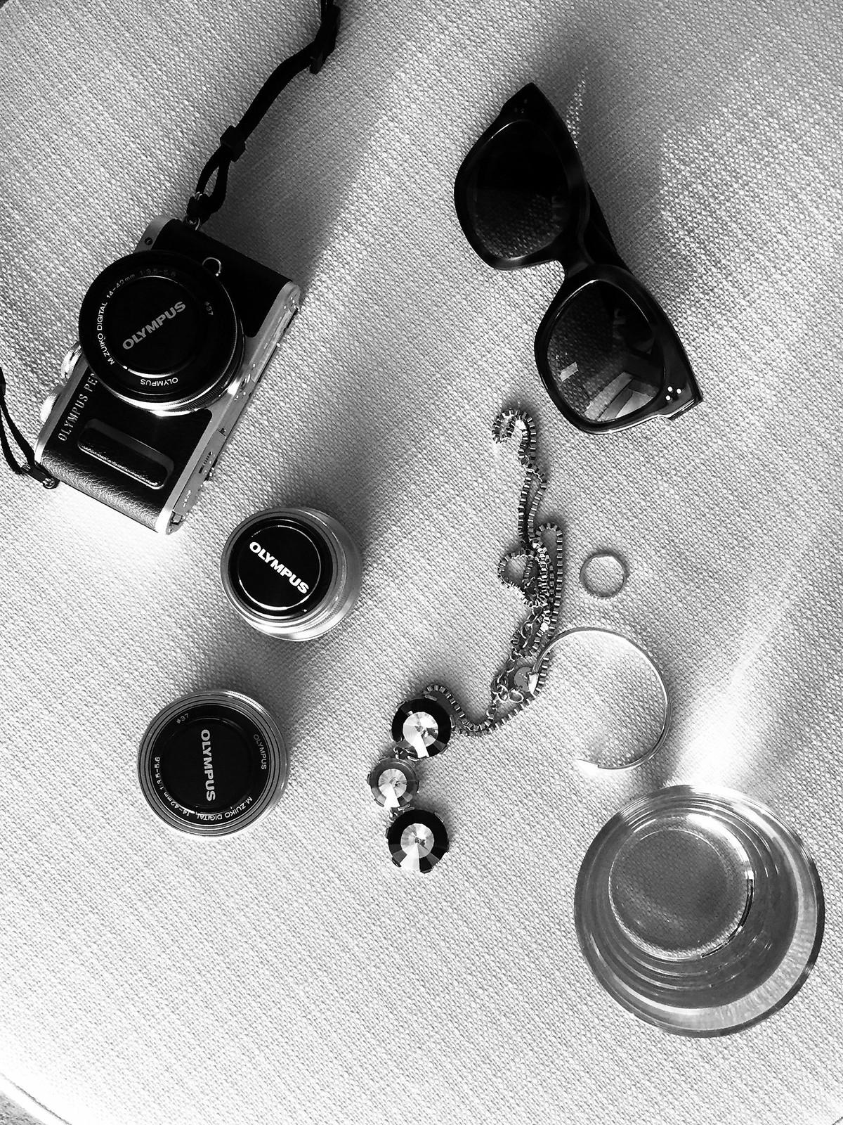 olympus #penpartygreece #olympuspengeneration pen e-pl8 greece nikki beach resort spa palm sun summer travel travelblogger germanblogger pool sun bathing bikini camera photography photographer cats & dogs lifestyleblog ricarda schernus fashionblogger 2