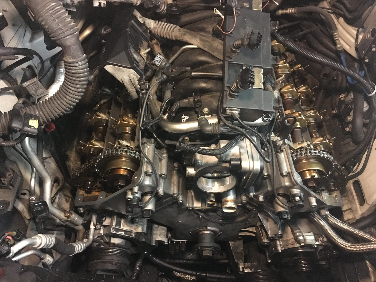 Dannys 2004 Range Rover Hse Page 6 Timing Belt Tonight My Goal Is To Install The Water Pump Crankshaft Pulley Tensioners Belts Valve Covers And Cooling Hoses