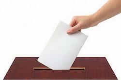 Селивановский район: результаты выборов 2016