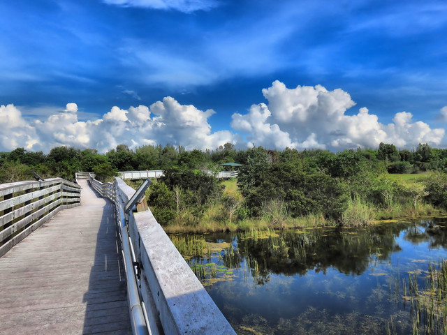 Chapel Trail boardwalk HDR 02-20160826