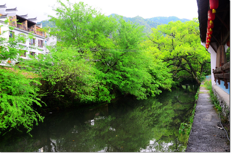 曉起村 2