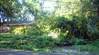 20120630 0848 - storm damage while yardsaleing - tree in driveway - IMG_4525 | by Rev. Xanatos Satanicos Bombasticos (ClintJCL)