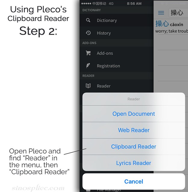 Using the Pleco Clipboard Reader