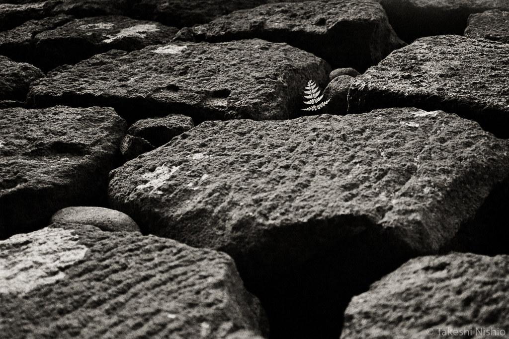 between castle rock wall