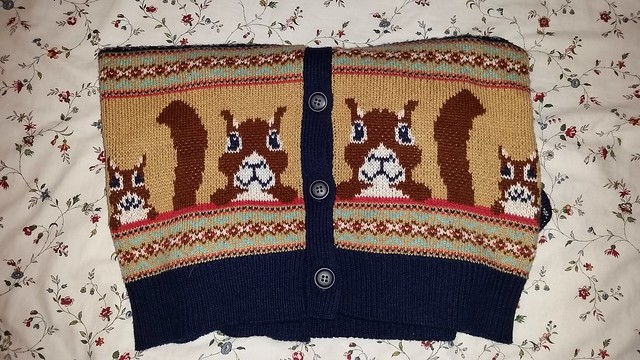 Penney's Atmosphere Squirrel Sweater