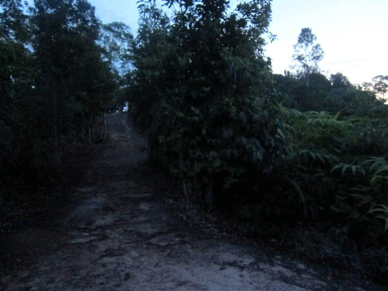 Bukit Panorama, Sungai Lembing - 02 trail