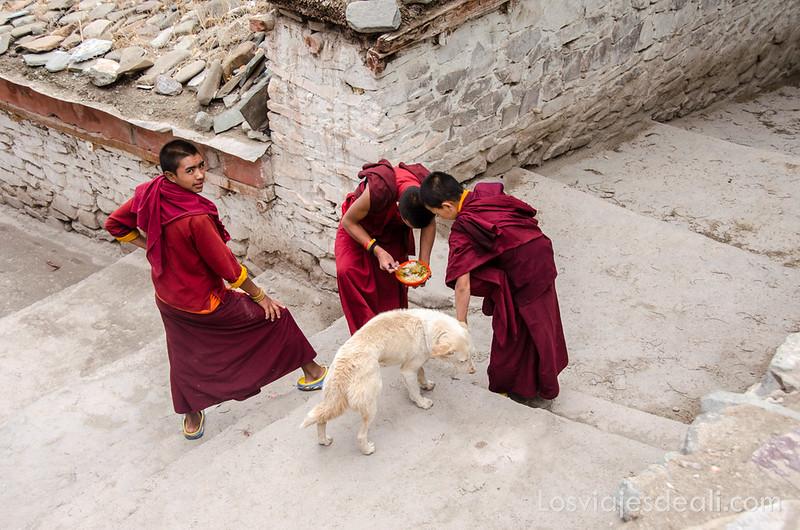 valle del indo monjes niño