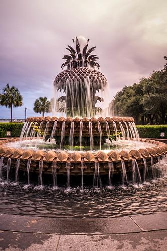 Pineapple Fountain in Charleston-003