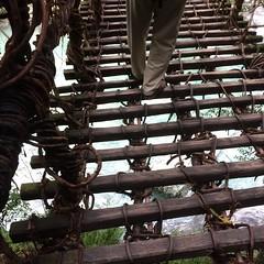 too scary for me to cross! #iyakazurabashi #shikoku #tokushima #徳島 #四国 #祖谷のかずら橋 #latergram