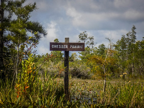Lowcountry Unfiltered at Okefenokee-242