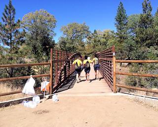 018 The Safe Passage Bridge