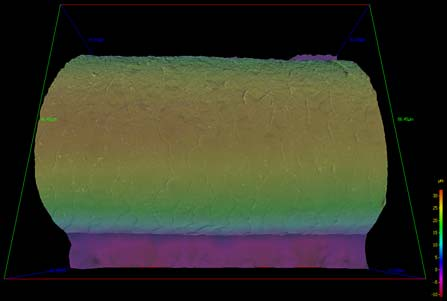 3d Sem Of Human Hair With Colour Height Scale 3d