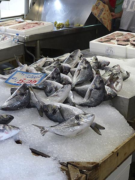 poissons en colère