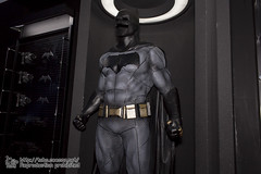 BATMAN100_HotToys_2-10