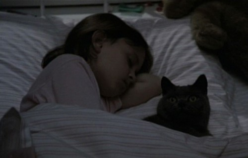 Pet Sematary - screenshot 8