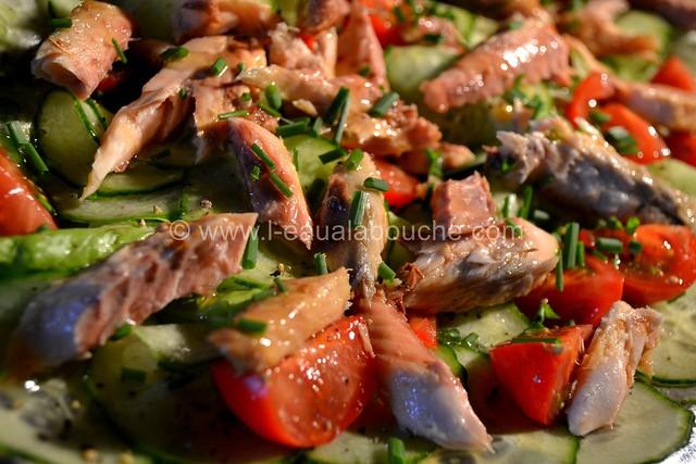 Salade Estivale au Maquereau © Ana Luthi  Tous droits réservés 003