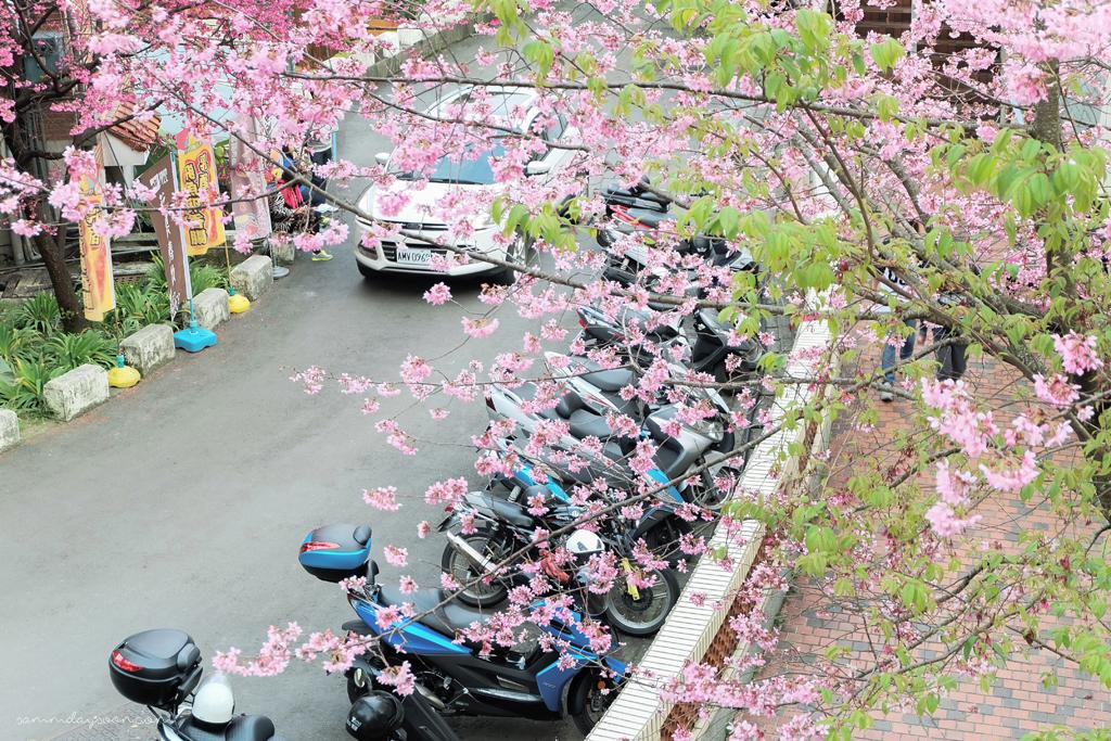 cingjing-farm-neighborhood