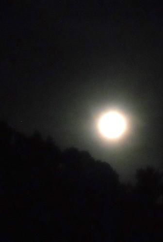 hazy moon