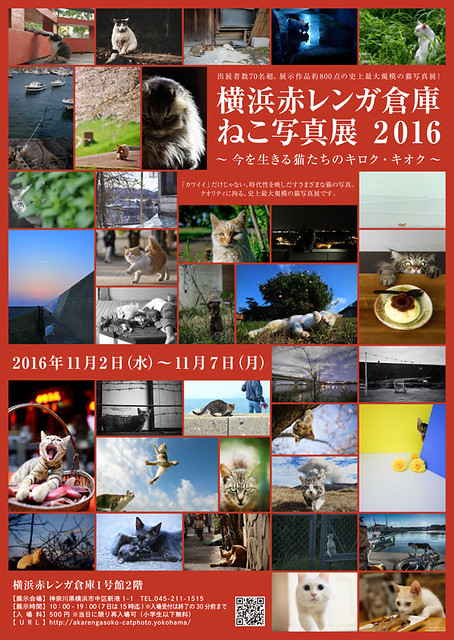 横浜赤レンガ倉庫ねこ写真展2016 表