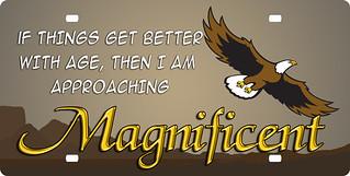 magnificent-eagle