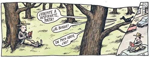 Tira de Liniers