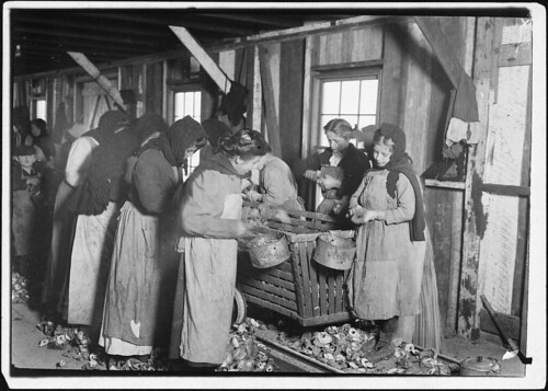 On right hand end is Marie Colbeck, 8 years old, who shucks 6 or 7 pots of oysters a day (30 or 35 cents) at Alabama Canning Factory, February 1911 | by The U.S. National Archives
