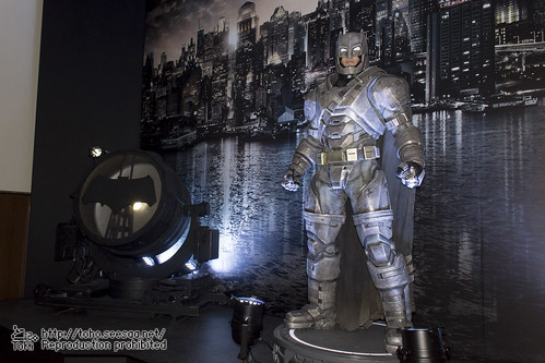 BATMAN100_HotToys_2-1