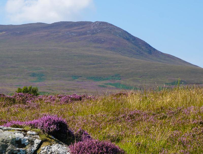 Scotland-56.jpg