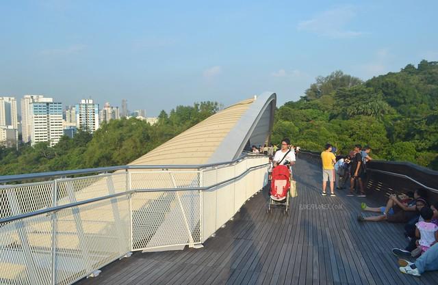 henderson waves southern ridges singapore