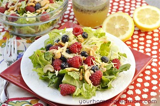 Lemon  and Summer Fruit Salad | by yourhomebasedmom