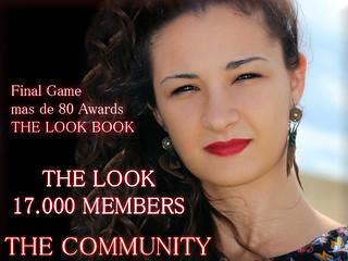 final game book 11