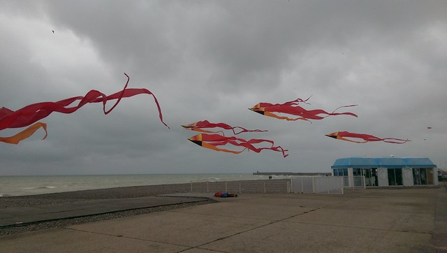 Drying kites