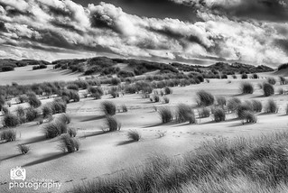 Sylt Wandering Dunes | by Chris Renk