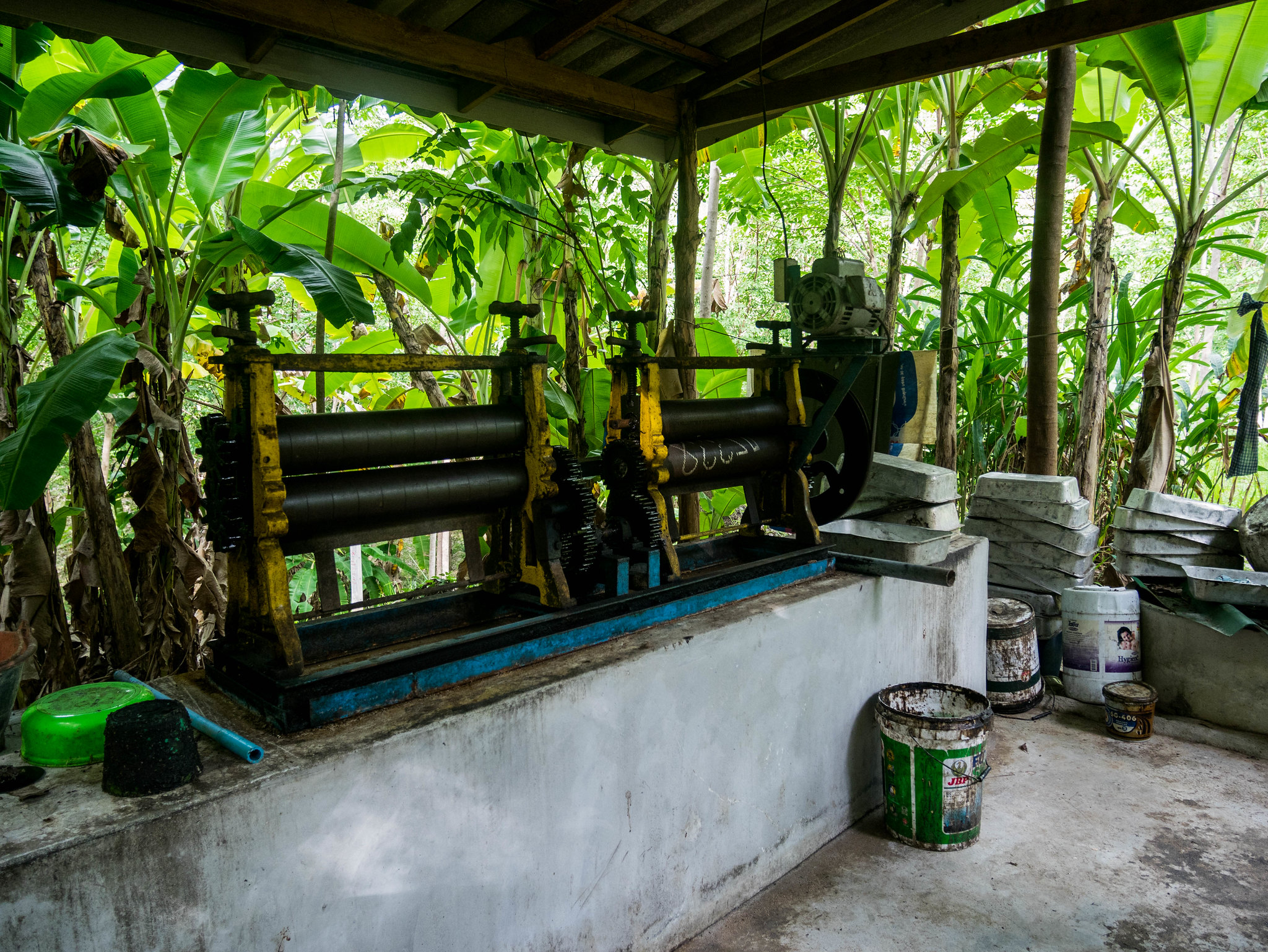 Traditional latex factory