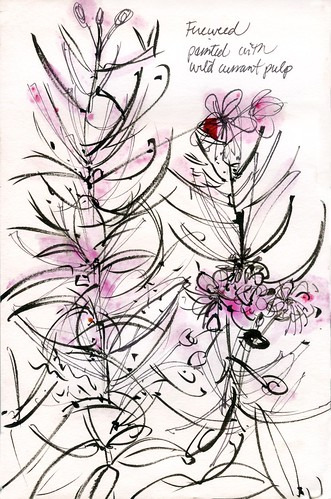 Alaska: fireweed, ink and wild currant stain