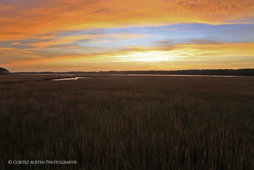 Chincoteague_Marsh_MG_0525 | by Cortez47